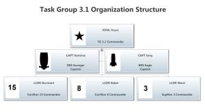 Task Group 3.1