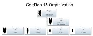 CortRon 15 Organization